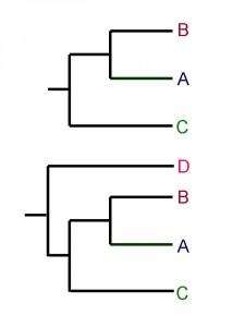 figuur-2-macro-2
