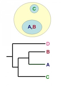 figuur-3b-macro-2